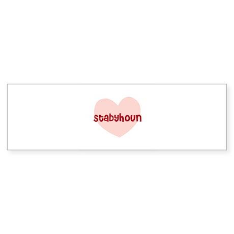 Stabyhoun Bumper Sticker