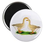 Buff Geese #2 Magnet