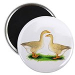 """Buff Geese #2 2.25"""" Magnet (100 pack)"""