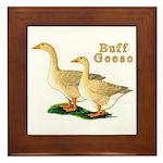 Buff Geese #5 Framed Tile