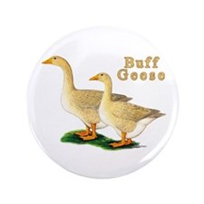 """Buff Geese #5 3.5"""" Button (100 pack)"""