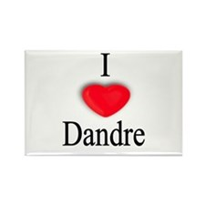 Dandre Rectangle Magnet