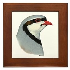 Chukar Partridge Head Framed Tile