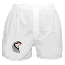 Chukar Partridge Head Boxer Shorts