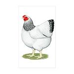 Wyandotte Columbian Hen Sticker (Rectangle 50 pk)