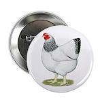 "Wyandotte Columbian Hen 2.25"" Button (100 pac"