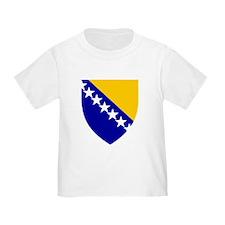 Bosnia Herzegovina Coat of Arms (Front) Tod