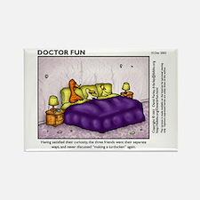 Dr. Fun Turducken Magnet