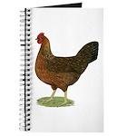 Welsummer Hen Journal