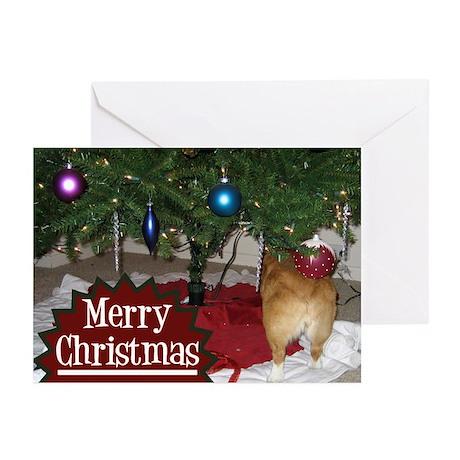Funny Christmas Corgi Greeting Cards (Pk of 10)
