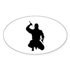 NINJA WARRIOR Decal