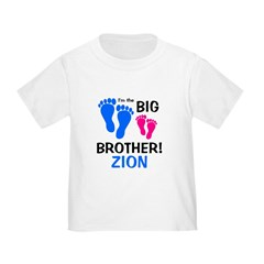 Big Brother ZION T