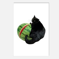 Cat with Watermelon Postcards (Package of 8)