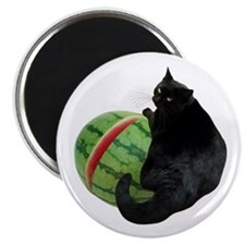 Cat with Watermelon Magnet