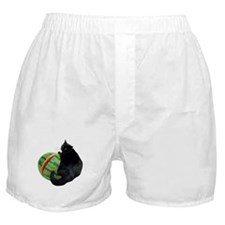 Cat with Watermelon Boxer Shorts