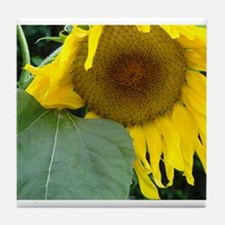 Sunflower Beauty Tile Coaster
