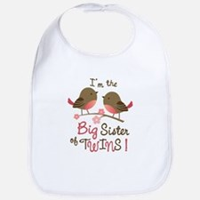 Big Sister of twins - Mod Bird Bib
