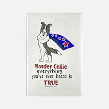Super Border Collie blue merle Rectangle Magnet