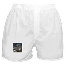 Nicolaus Copernicus Cosmos Boxer Shorts