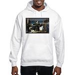 Nicolaus Copernicus Cosmos Hooded Sweatshirt
