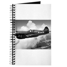 P-40 Beautiful Flight Journal