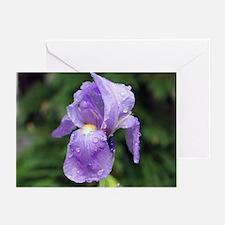 Iris Greeting Cards (Pk of 10)