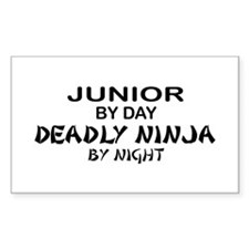 Deadly Ninja by Night - Junior Decal