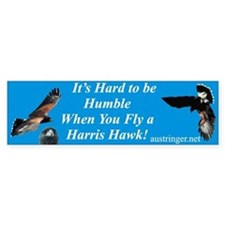 Hard to be Humble Bumper Bumper Sticker