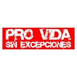 Pro-Vida Bumper Sticker