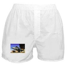 Tomcat Boxer Shorts