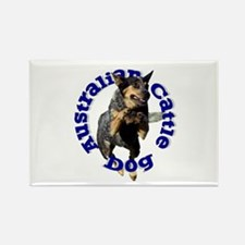 Cattle Dog House Rectangle Magnet