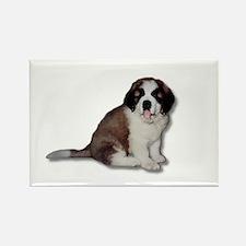 Saint Bernard Puppy Rectangle Magnet