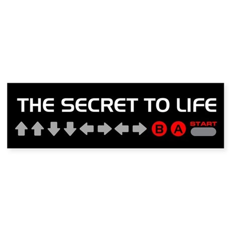The Secret to Life -- Bumper Sticker