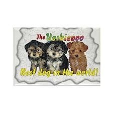 Unique Yorkiepoo puppy Rectangle Magnet (100 pack)