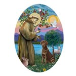 St Francis - Chocolate Lab Ornament (Oval)