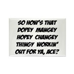Hopey Changey Magnet