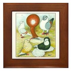 Coloring Book Pigeons Framed Tile