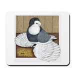 Andalusian English Trumpeter Mousepad