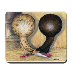 Jacobin Pigeons Mousepad