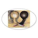 Jacobin Pigeons Oval Sticker