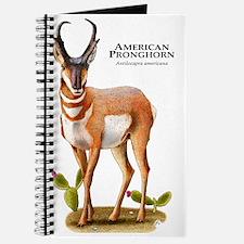 American Pronghorn Journal