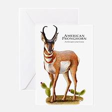American Pronghorn Greeting Card