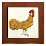 Minorca Rooster Framed Tile
