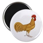 """Minorca Rooster 2.25"""" Magnet (10 pack)"""