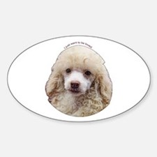 Miniature Poodle Oval Decal