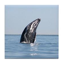 Tile Coaster-Whale (Gray)
