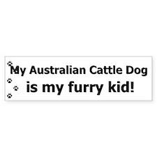 Australian Cattle Dog Furry Kid Bumper Bumper Stickers