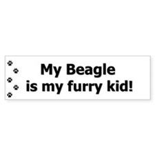 Beagle Furry Kid Bumper Bumper Sticker
