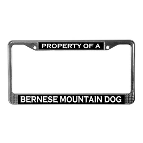 Property of Bernese Mountain Dog License Frame