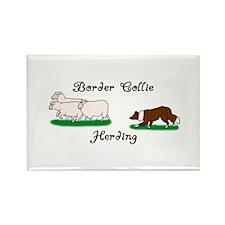 Border Collie Herding Rectangle Magnet